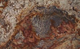 Copper Illusion Granite