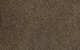 Tropical Brown Granite